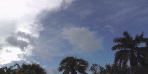 tropical sky 3