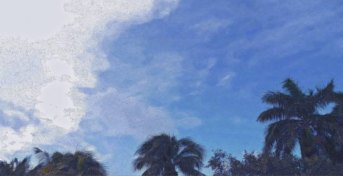 Painted Tropical Sky